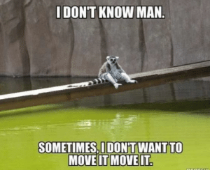 Man, Move, and Mov: DON'T KNOW MAN  SOMETIMES,I DON'T WANT TO  MOVE IT MOV Some days are like that