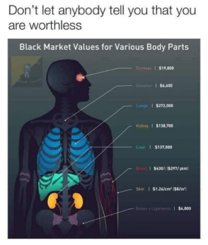 the-memedaddy:meirl: Don't let anybody tell you that you  are worthless  Black Market Values for Various Body Parts  Corneas $19,800  Skeleton $6,600  Lungs $272,000  Kidney $138,700  Liver $137,000  Bisad $630/11$297/ pint  Skin $1.24/cm2 (8/in  Bones+Lipaments $4,800 the-memedaddy:meirl