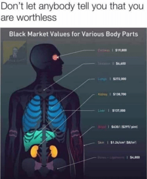 : Don't let anybody tell you that you  are worthless  Black Market Values for Various Body Parts  Conwas $19,800  GRe $6,600  Luhgs $272,000  Kidney $138,700  Liver $137,000  $630/1 15297/pint  Skin $1.24/cm2 ($8/in  Banes+Linemens $4,800