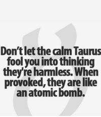 Taurus, They, and You: Don't let the calm Taurus  fool you into thinking  theyre harmless. When  provoked,they arelike  anatomic bomb.