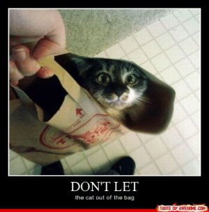 Don't Lethttp://omg-humor.tumblr.com: DON'T LET  the cat out of the bag  TASTE OF AWESOME.COM Don't Lethttp://omg-humor.tumblr.com