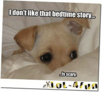 I don't like dat bedtime story, its too scary   BOL   #dog #story Night All, sweet dreams and see you in the morning: don't like that bedtime story  ls Scary I don't like dat bedtime story, its too scary   BOL   #dog #story Night All, sweet dreams and see you in the morning