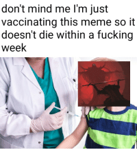Fucking, Meme, and Mind: don't mind me l'm just  vaccinating this meme so it  doesn't die within a fucking  week me irl