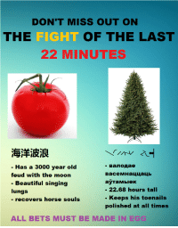 Beautiful, Reddit, and Singing: DON'T MISS OUT ON  THE  FIGHT  OF THE LAST  22 MINUTES  海洋波浪  - Has a 3000 year old  feud with the moon  Beautiful singing  lungs  - recovers horse souls  васемнаццаць  аута мыек  - 22.68 hours t  Keeps his toenails  polished at all times  ALL BETS MUST BE MADE IN EGG [Src]