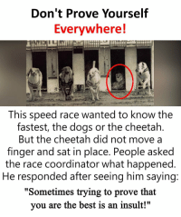 "Dogs, Memes, and Best: Don't Prove Yourself  Evervwhere!  This speed race wanted to know the  fastest, the dogs or the cheetah  But the cheetah did not move a  finger and sat in place. People asked  the race coordinator what happened  He responded after seeing him saying  ""Sometimes trying to prove that  you are the best is an insult!"" https://t.co/QMxtsrgrBA"