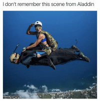Swipe right: 3 for 1 meme special (wing suit pic @0limiller @theonlyblackbutterfly @swrl.productions): don't remember this scene from Aladdin Swipe right: 3 for 1 meme special (wing suit pic @0limiller @theonlyblackbutterfly @swrl.productions)