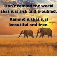 """Via @conscious_collective 👈☺ """"We are here to heal, not harm. We are here to love, not hate. We are here to create, not destroy."""" — Anthony Douglas Williams. loveandlight earth awakespiritual onelove: Don't remind the world  that it is sick and troubled.  Remind it that it is  beautiful and free.  Mooji Via @conscious_collective 👈☺ """"We are here to heal, not harm. We are here to love, not hate. We are here to create, not destroy."""" — Anthony Douglas Williams. loveandlight earth awakespiritual onelove"""