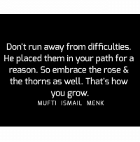 Memes, 🤖, and The Rose: Don't run away from difficulties.  He placed them in your path for a  reason. So embrace the rose &  the thorns as well. That's how  you grow  MUFTI ISMAIL MENK Tag • Share • Like Don't run away from difficulties. He placed them in your path for a reason. So embrace the rose & the thorns as well. That's how you grow. muftimenk muftimenkfanpage muftimenkreminders Follow: @muftimenkofficial