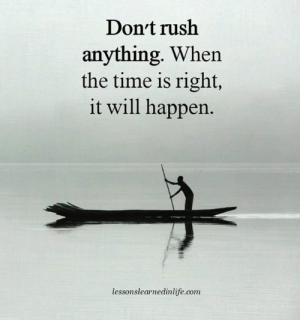will happen: Don't rush  anything. When  the time is right,  it will happen.  lessonslearnedinlife.com