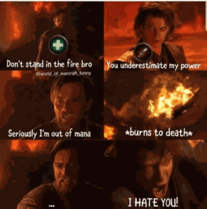 Don't stand in the fire bro: Don't stand in the fire bro  world of warcraft funny  You underestimate my power  *burns to death*  Seriously I'm out of mana  I HATE YOU! Don't stand in the fire bro