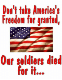 Never take America's freedom for granted!: Don't take America's  Freedom for granted  Our soldiers died  for it... Never take America's freedom for granted!