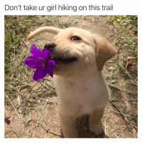 Being Alone, Funny, and Girl: Don't take ur girl hiking on this trail You will be walking back alone