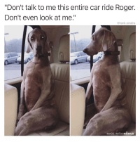 "Funny, Roger, and Don't Talk to Me: ""Don't talk to me this entire car ride Roger.  Don't even look at me.""  @tank.sinatra  MADE WITH MOMUS Damn Roger what'd you do"