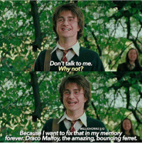 Love, Memes, and School: Don't talk to me.  Why not?  Because I want tofix that in my memory  forever Draco Mahoy, the amazing, bouncing femet. quotesthatwereinthebooksandshouldhavebeeninthemovies woohoo I love posting these kinds of edits! It's my last full day of vacation and I'm so sad I have to go back to school and work and all the stress that comes along with that :( What are your opinions on draco?