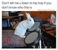 Hip Hop, Dank Memes, and Who: Don't tell me u listen to hip hop if you  don't know who this is  QCabbageCatMemes @cabbagecatmemes making a huge comeback 🤙