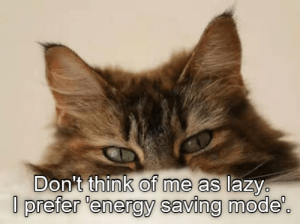 Cheezburger's LOLCats.#cats #catmemes #lolcats #funnycats #animals #animalmemes #funnymemes #: Don't think of me as lazy  prefer 'energy saving mode'. Cheezburger's LOLCats.#cats #catmemes #lolcats #funnycats #animals #animalmemes #funnymemes #