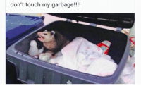 Garbage, Code, and Touch: don't touch my garbage!!!! When a coworker wants to do a code review