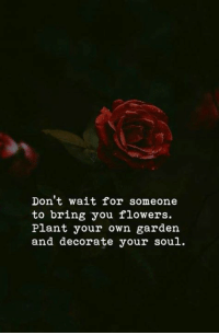Flowers, Soul, and Own: Don't wait for someone  to bring you flowers.  Plant your own garden  and decorate your soul