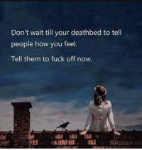 Lpt, Tumblr, and Blog: Don't wait till your deathbed to tell  people how you feel  Tell them to fuck off now terrible-lifeadvice:  LPT: For getting rid of people you don't like