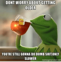 Dumb, Kermit the Frog, and Net: DONT WORRY ABOUT GETTING  OLDER  YOU'RE STILL GONNA DO DUMB SHITONLY  SLOWER  memegenerator net
