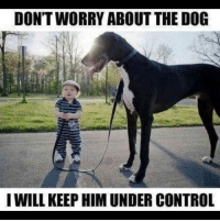 Lol: DON'T WORRY ABOUT THE DOG  I WILL KEEP HIM UNDER CONTROL Lol