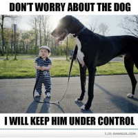Lol, Memes, and Tldr: DON'T WORRY ABOUT THE DOG  I WILL KEEP HIMUNDER CONTROL  TLDR, DAMNLOLCOM Damn! LOL: Are you sure about that little guy  http://bit.ly/DailyDose65