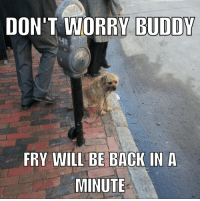 Back, Dog, and Will: DON'T WORRY BUDDY  FRY WILL BE BACK IN A  MINUTE *Cries in dog*