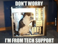 """My PC is in safe hands    ...Follow 1 Million Cats on Instagram: """"1mCats"""": DON'T WORRY  I'M FROM TECH SUPPORT My PC is in safe hands    ...Follow 1 Million Cats on Instagram: """"1mCats"""""""