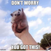 you got this: DON'T WORRY  YOU GOT THIS!