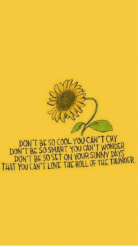 Love, Cool, and Wonder: DON'TBESO COOL YOU CAN't CRY  DON'T BE SO SMART YOU CAN'T WONDER  DON'T BE S0 SET ON YOUR SUNNY DAYS  THAT YOU CAN'T LOVE THE ROLL OF THE TAUNDER