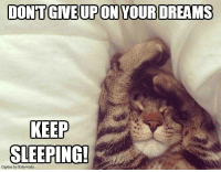 Memes, 🤖, and Dream On: DONTGIVE UPON YOUR DREAMS  KEEP  SLEEPING! Dream On!