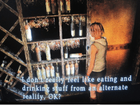 Drinking, Food, and Fucking: dontideally feel like eating and  drinking stuff from an alternate  reality, netherstray: wassrerplane:  powerburial: me when someone tries to feed me british food ok but are those fucking wine bottles loss.jpg  we keep saying the silent hill games were ahead of their time