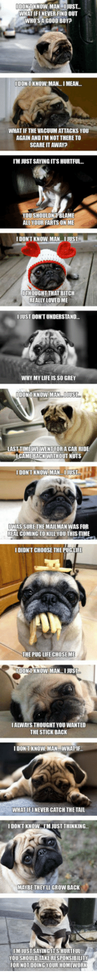 <p>Introspective Pugs.</p>: DONTKNOW. MANJUST  WHAT IFINEVER FIND OUT  WHOSA GO0D BOY  IDONT KNOW MAN.. I MEAN...  WHAT IFTHE VACUUM ATTACKS YOU  AGAIN AND I'M NOT THERE TO  SCARE IT AWAY?  TM JUST SAYING ITS HURTFUL..  YOUSHOULDNT BLAME  ALLYOUR FARTS ON ME  I DONT KNOW MAN  JUSL  ITHOUGHT THAT BITCH  REALLY LOVED ME  IJUST DON'T UNDERSTAND.  WHY MY LIFE IS SO GREY  IIDONTTKNOW.MAN IJUST  LAST TIMEWEWENTFOR A CAR RIDE  CAME BACKWITHOUT NUTS  DONTKNOWMAN.JUST  WAS SURE THE MAILMAN WAS FOR  REAL COMING TO KILL YOU THISTIME  IDIDNT CHOOSE THE PUGLIFE  THE PUG LIFE CHOSEME  DONTKNOW.MAN.I JUST  IALWAYS THOUGHT YOU WANTED  THE STICK BACK  IDON TKNOW MANWHAT'I  WHATIFINEVER CATCH THE TAIL  I DON'T KNOW IM JUSTTHINKING...  MAYBE THEYLLGROW BACK  TM JUSTSAYING ITS HURTFUL.  YOU SHOULD TAKERESPONSIBILITY  FOR HOTDOING YOUR HOMEWORK <p>Introspective Pugs.</p>