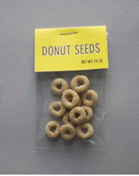 =Summer=: DONUT SEEDS =Summer=
