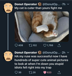We got bamboozled!: @DonutOp... 7h  Donut Operator  My cat is cuter than yours fight me  1,766  t102  408  @DonutOp... 2h  Donut Operator  HA my ruse was successful now I have  hundreds of super cute animal pictures  to look at when I'm down you stupid  idiots fell right into my trap  36  t126  620 We got bamboozled!