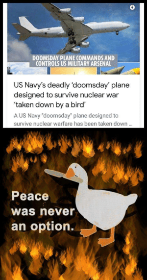"Navy: DOOMSDAY PLANE COMMANDS AND  CONTROLS US MILITARY ARSENAL  US Navy's deadly 'doomsday' plane  designed to survive nuclear war  'taken down by a bird'  A US Navy ""doomsday"" plane designed to  survive nuclear warfare has been taken down.  Peace  was never  an option."