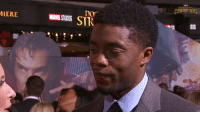 Doctor, Love, and Memes: Dor  DES  IERE  MARSTUDGS STR Chadwick Boseman (Black Panther) interviewed at the Doctor Strange premiere.  (Nerds Love Art)