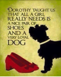Dorothy taught us that all a girl needs is a nice pair of shoes and a dog 🐕 🐾: DOROTHY TAUGHT us  THAT ALL A GIRL  REALLY NEEDS IS  A NICE PAIR OF  SHOES  AND A  VERY LOYAL  DOG Dorothy taught us that all a girl needs is a nice pair of shoes and a dog 🐕 🐾