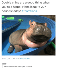 Beautiful, Love, and Good: Double chins are a good thing when  you're a hippo! Fiona is up to 227  pounds today! #teamfiona  5/12/17, 12:17 PM from Hippo Cove  ipoils  fiona is beautiful and doing great. i love he
