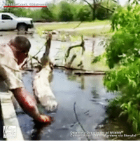 Memes, Game, and Help: Double Creek, Oklahoma  oklahoma Department of Wildlife  Conservation  Game Wardens via Storyful Sweet Rescue: Oklahoma Game Warden Joe Alexander came to the rescue of a baby owl stranded in a creek. With help from a local fireman and his boat, they were able to pull the owl to safety.