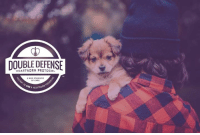 Dogs, Memes, and Heart: DOUBLE DEFENSE  HEARTWORM PROTOCOL  A NEW STANDARD  OF CAR  AND A HEAR Defend your dog with all your heart. Learn how you can join the fight against mosquitoes and other vector-borne diseases in dogs here: http://bit.ly/2biZTuY
