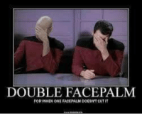 face palm: DOUBLE FACEPALM  FOR WHEN ONE FACE PALM DOESNT CUT IT