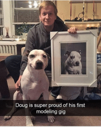 Doug, Memes, and Proud: Doug is super proud of his first  modeling gig Follow @_taxo_ for the funniest memes 😂