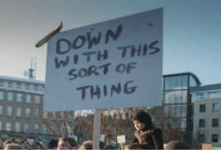 Protest, Time, and Funny Signs: DOWN  THIS  SORT OF  THING This time, we're serious.