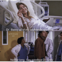 Memes, Grey, and 🤖: Dr. Bailey all of my boyfriends are here  g little.lexie grey  3x04  Not for long. Say aoodbve Dr. Grey Who remembers this 😂 #GreysAnatomy https://t.co/Xnr8rEox1j