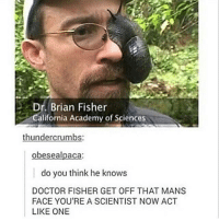 Some more shit flow for you guys: Dr. Brian Fisher  alifornia Academy of Sciences  thunder crumbs  obese alpaca  do you think he knows  DOCTOR FISHER GET OFF THAT MANS  FACE YOU'RE A SCIENTIST NOW ACT  LIKE ONE Some more shit flow for you guys