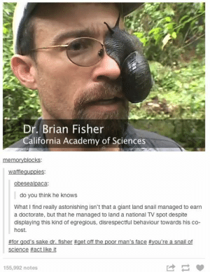 madsciences:  entoderek:  Ok so this post is a good post. But did you know there's more to it than just the screencap? Best 38 seconds of your night, guaranteed.  another casualty : Dr. Brian Fisher  California Academy of Sciences  mo  waffleguppies  obesealpaca:  do you think he knows  What I find really astonishing isn't that a giant land snail managed to earn  a doctorate, but that he managed to land a national TV spot despite  displaying this kind of egregious, disrespectful behaviour towards his co-  host.  #for god's sake dr. fisher #get off the poor man's face #you're a snail of  science #actlike it  155,992 notes madsciences:  entoderek:  Ok so this post is a good post. But did you know there's more to it than just the screencap? Best 38 seconds of your night, guaranteed.  another casualty