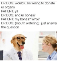 Bones, Memes, and Patient: DR DOG: would u be willing to donate  ur organs  PATIENT ya  DR DOG: and ur bones?  PATIENT my bones? Why?  DR DOG: (mouth watering): just answer  the question