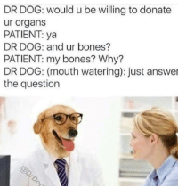 "Bones, Tumblr, and Blog: DR DOG: would u be willing to donate  ur organs  PATIENT: ya  DR DOG: and ur bones?  PATIENT: my bones? Why?  DR DOG: (mouth watering): just answer  the question <p><a href=""http://memehumor.net/post/172699607667/youd-be-doing-me-a-great-favour-slurrp"" class=""tumblr_blog"">memehumor</a>:</p>  <blockquote><p>You'd be doing me a great favour *slurrp*</p></blockquote>"