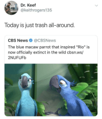 """News, Trash, and Cbs: Dr. Keef  @keithrogers135  Today is just trash all-around.  CBS News@CBSNews  The blue macaw parrot that inspired """"Rio"""" is  now officially extinct in the wild cbsn.ws/  2NUFUFb It's been a sad last couple of days"""